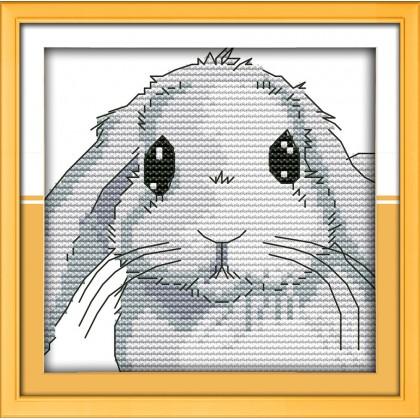 Big eyes rabbit