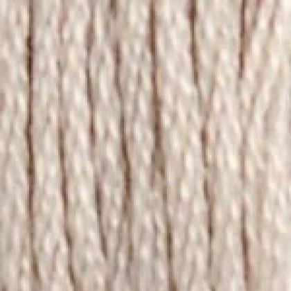 Six Strand Embroidery Floss (#06)