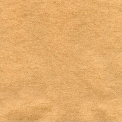 KRAFT WASHABLE PAPER FABRIC